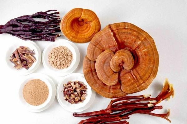 Adenosine thành phần trắng da từ Linh chi và đông trùng hạ thảo
